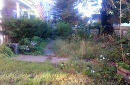 Yard Clean Up – Amesbury (Before)