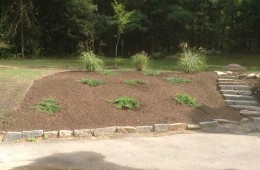 North Andover Plantings (after)