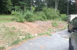 North Andover Plantings (before)