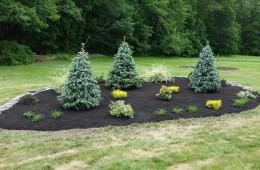 Tree Berm – Atkinson, NH