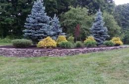 Walled Tree Berm – Atkinson, NH