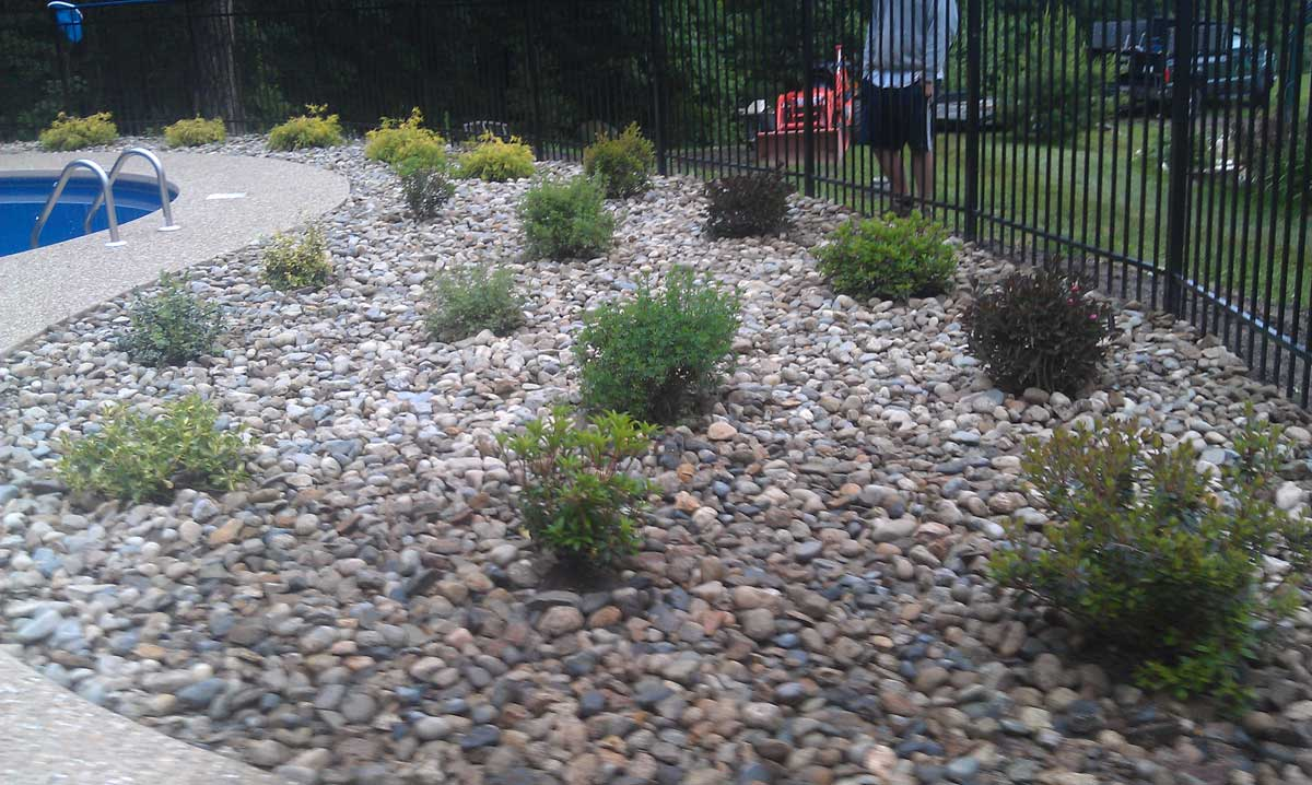 Merrimac Plantings (after)